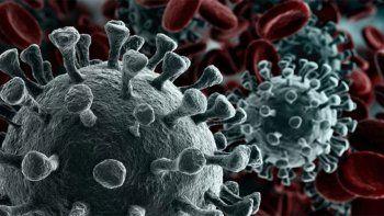 Definido como una consecuencia del coronavirus, también es denominado Cerebro COVID