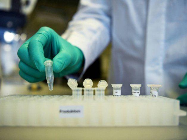 Covid-19: la vacuna alemana se testeará en Argentina