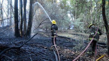 Sumarán recorredores mapuches para prevenir incendios forestales