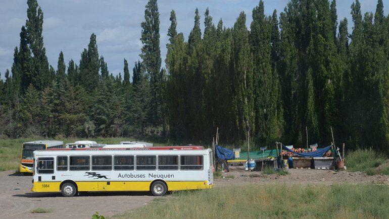 Choferes de Autobuses prestarían sólo frecuencias esenciales