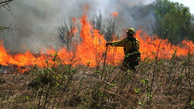 El jueves pasado se quemaron 55 hectáreas en Plottier.