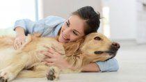 acariciar animales, el mejor remedio para liberarse del estres
