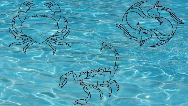 Zodíaco: los encantos de los signos de agua