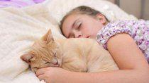 descansan mejor los ninos que duermen con sus mascotas