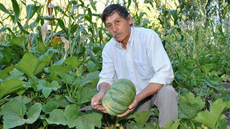 Apostar a la producción agrícola como forma de vida