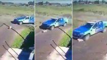 video indignante: policias atropellaron con un patrullero a un pequeno perro