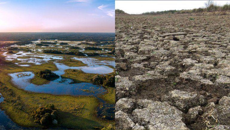 Crisis climática en Brasil: el gigante se está secando