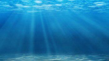 Conocé el significado de soñar con el mar