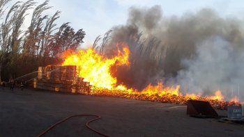 En un incendio se quemaron unos 1.200 bins en San Patricio del Chañar
