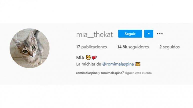 La gata con la que posó desnuda para Caras tiene su propia cuenta de Instagram.