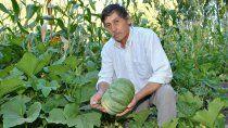 covunco: nestor apuesta a la produccion agricola como forma de vida