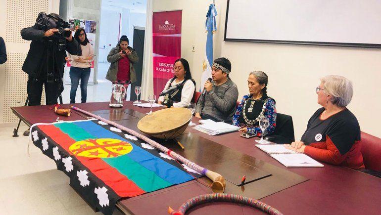 Presentan proyecto para oficializar la lengua mapuche mapuzugun