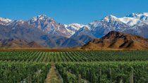 los vinos mas australes del mundo en la patagonia