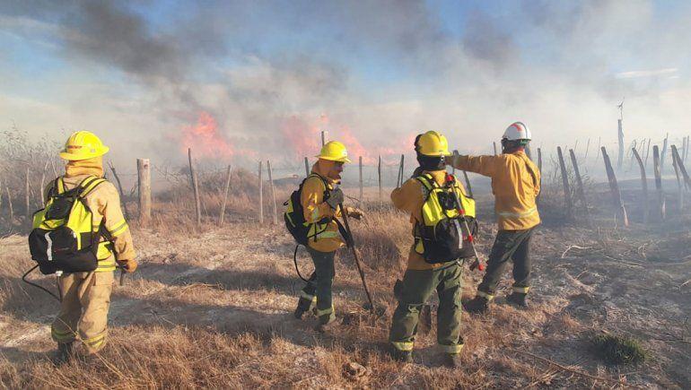 Sequía y viento: un incendio consumió 25 hectáreas en Picún