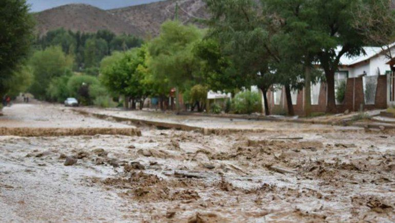 Tormenta en Barrancas: El agua arrastró hasta las chivas