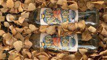 un nuevo gin patagonico: zorro colorado