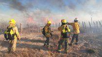 sequia y viento: un incendio consumio 25 hectareas en picun