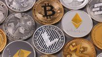 bitcoin: preocupa la peligrosa concentracion de criptodivisas