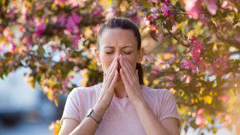 claves para diferenciar la alergia del coronavirus