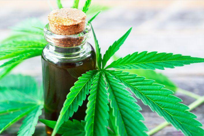 Impulsan la legislación del cannabis medicinal en la provincia