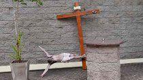 vandalizaron la catedral de lomas de zamora