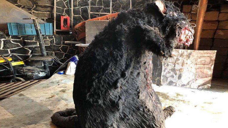 La historia de la rata gigante salida de una alcantarilla
