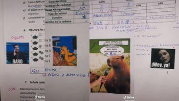 La docente que se volvió viral por corregir las evaluaciones de sus alumnos con memes