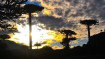 caviahue quiere una apertura responsable del turismo