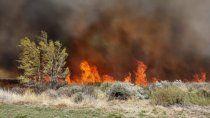 alerta por la sequia: voraz incendio quemo 40 hectareas en picun leufu