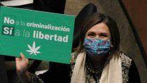 legalizan la marihuana para combatir a los narcos