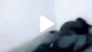 El video es viral en TikTok