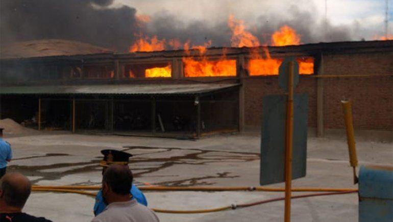 Voraz incendio en un galpón de empaque en Confluencia