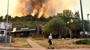 cataluna: incendio arrasa una reserva