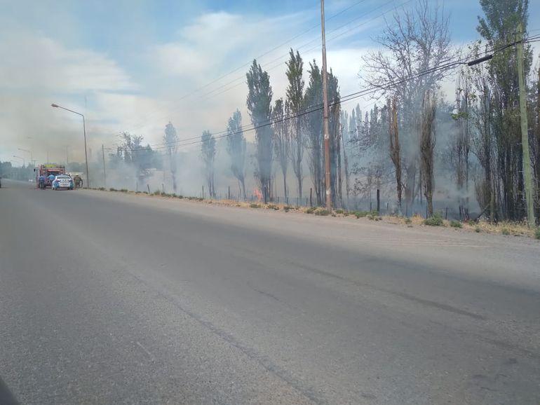 Apagaron un foco de incendio cerca del aeropuerto