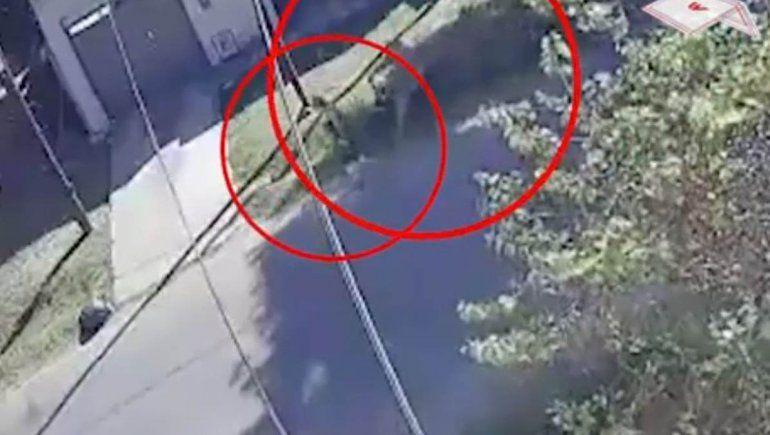 Video: motochorro arrastró a una jubilada por la calle para robarle