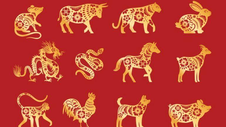 Horóscopo chino: lo que debes saber para febrero