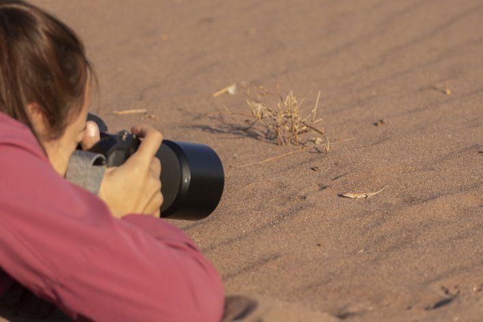María Victoria Brizio fotografiando a una lagartija Liolaemus cuyumhue en Añelo.