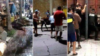 video: faenaron un novillo en plena calle durante una protesta de vecinos