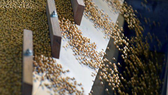 La soja siendo clasificada según su peso y densidad en una máquina clasificadora por gravedad en las instalaciones de Peterson Farms Seed en Fargo, Dakota del Norte, EEUU, el 6 de diciembre de 2017.