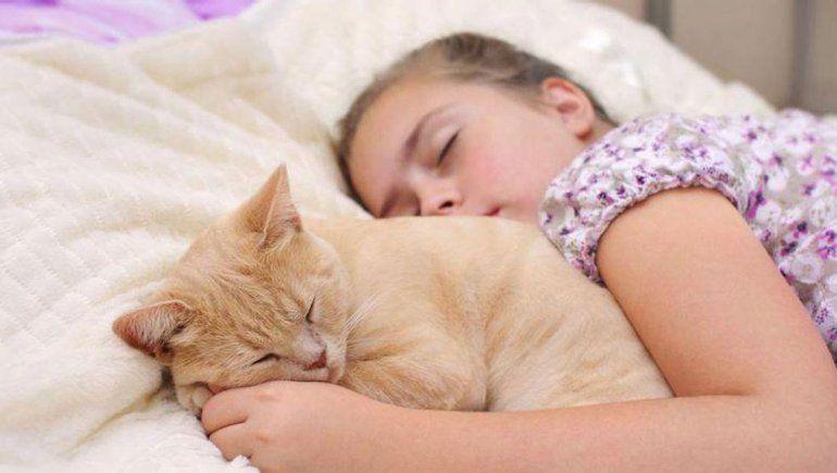 Descansan mejor los niños que duermen con sus mascotas