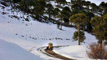 turismo: seis consejos para circular seguro por las rutas de neuquen