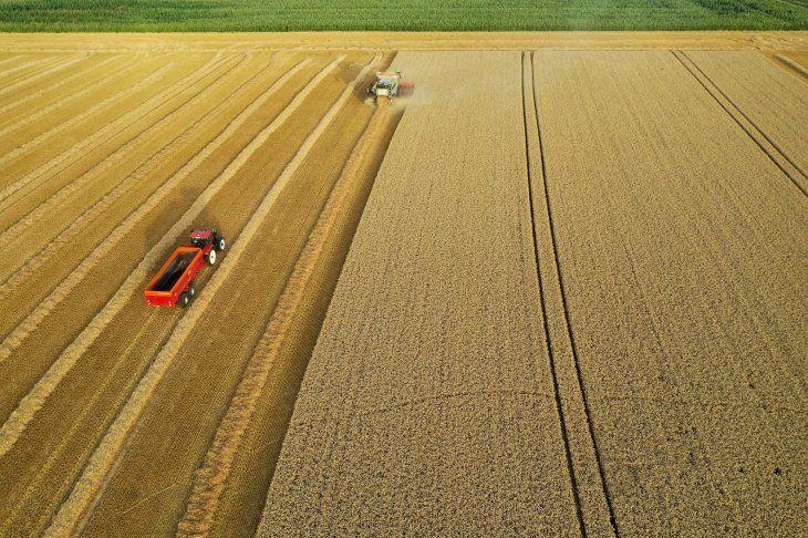 Imagen de archivo de un agricultor francés cosechando su campo de trigo en Haynecourt
