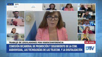 Miriam Lewin expone ante Diputados sobre el observatorio NODIO