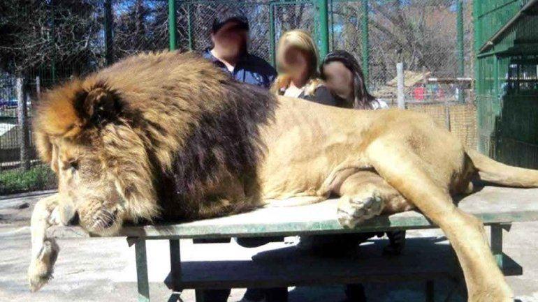 Cierran el zoológico de Luján por cómo trata a sus animales