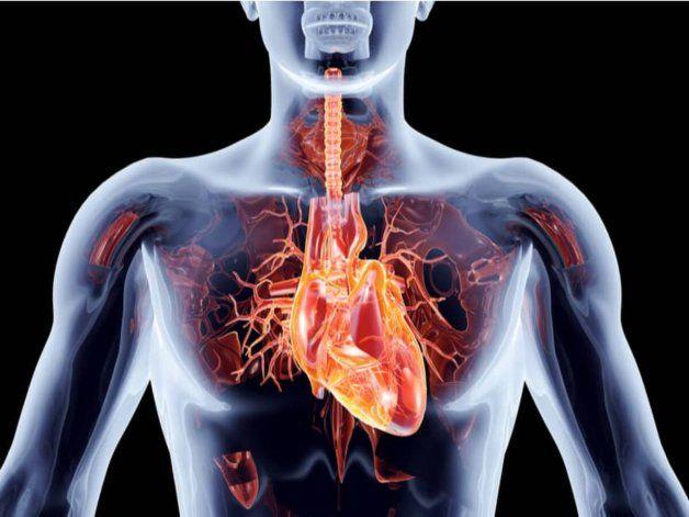 Imágenes, las mejores aliadas en el abordaje de las enfermedades cardiovasculares