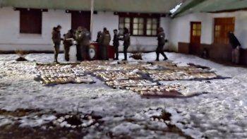 Pehuenia: el cargamento de drogas secuestrado supera los $110 millones
