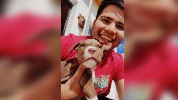 Apareció Máximo, el pitbull que había sido robado en Cutral Co