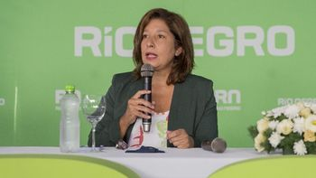 Río Negro piensa en un consejo de inversiones para el Hidrógeno verde