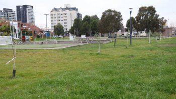 La Muni se propone plantar 20 mil árboles antes de fin de año