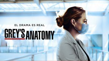 Greys Anatomy tendrá temporada 18